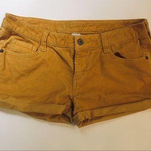 Mustard Arizona Shorts